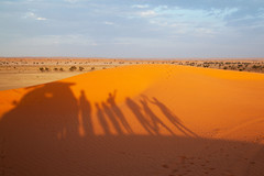 Shadows on Big Red (Callags) Tags: birdsville queensland australia dune sand red outback shadows