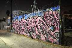 Late Night Alley Tagging