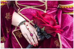Here Comes The Bride (Mark Haddon Images) Tags: bride wedding medieval whittingtoncastle redflower medievalwedding