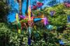 2018 - Mexico - Oaxaca - Casa Colonial B & B (Ted's photos - Returns late Feb) Tags: 2018 cropped mexico nikon nikond750 nikonfx oaxaca tedmcgrath tedsphotos tedsphotosmexico vignetting colorful colourful chaise oaxacadejuárez casacolonial casacolonialoaxaca oaxacaoaxaca