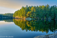 Thetis Lake Reflection (Per@vicbcca) Tags: ilce7m2 sony fe24105mmf4goss a7ii thetislake victoria britishcolumbia canada vancouverisland reflections reflection forest park regionalpark photographiadepaisaje turismo