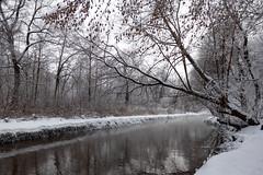 Winter river (gubanov77) Tags: winter snow river nature december churilihariver moscow russia kuzminki water wood lublino люблино кузьминки