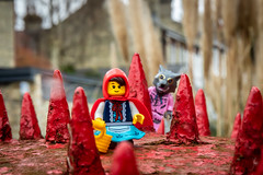 Little Red Riding Hood (Ballou34) Tags: 2019 7dmark2 7dmarkii 7d2 7dii afol ballou34 canon canon7dmarkii canon7dii eos eos7dmarkii eos7d2 eos7dii flickr lego legographer legography minifigures photography stuckinplastic toy toyphotography toys stuck in plastic little red riding hood cape spikes wolf grandma
