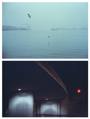 cinestill diptychs 002 (miemo) Tags: balticsea cinestill cinestill800t europe finland abstract analog analogue city concrete diptych ferries film fog helsinki minimal minimalism night overpass rangefinder sea seagull ships urban yashica yashicaelectro yashicaelectro35