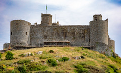 MK4_3948 (2.6 mil views - Thank you all.) Tags: harlech wales unitedkingdom gb staneastwood stanleyeastwood building architecture castle
