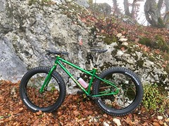 A Snakedriver The First Time Out (29in.CH) Tags: 44bikes snakedriver fatbike 16112018 autumn fall ride