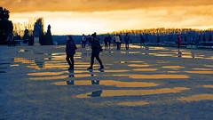 Reflets sepia (Chrisar) Tags: versailles chateau angénieux3570 nikond750 dxophotolab sepia