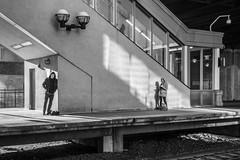 Railhawks (John St John Photography) Tags: streetphotography candidphotography njtransit secaucusjunction secaucus nj platform commuters waiting tracks railroadtracks man woman shadow shadows edwardhopper bw blackandwhite blackwhite blackwhitephotos johnstjohnphotography