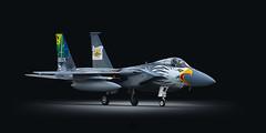 The Screaming Eagle (Erkka Hindberg) Tags: mcdonnelldouglas f15c eagle 790041 usaf oregonang 75thanniversary 173rdfw klamathfalls kingsleyfield sentrylynx kuopio rissala efku finland