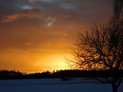 ....man könnte zur Scheune laufen..... (elisabeth.mcghee) Tags: sonnenuntergang sunset landschaft winterlandschaft wintersonne schneelandschaft schnee snow oberpfalz upper palatinate bäume trees wolken himmel clouds sky scheune barn