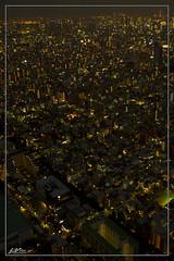 IMG_0746 (jlpvina) Tags: leovinaphotography canoneos7d japan nihon asakusa sky tree city scape night shot tokyo