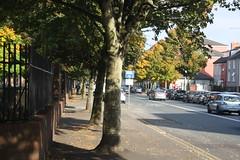 Mardyke Walk (lazy south's travels) Tags: cork countycork ireland irish europe european tree road street scene urban city