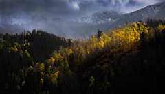 Divine Accent (Jeff Stamer (Firefallphotography.com)) Tags: jeffstamer firefallphotographycom colorado san juan mountains mt sneffels fall aspens shadows uncompahgre national forest 14ers