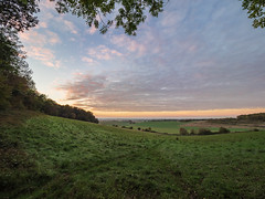 Chiltern Way (Bruce Clarke) Tags: autumn olympus landscape sunset woods lowsun outdoor fall hammondswood dusk trees m43 714mmf28 chilternway omdem1 chilterns beech oxfordshire