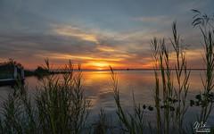 Sunset over Lake Washington (Michael Seeley) Tags: canon florida lakewashington melbourne mikeseeley shoreline spacecoast sunset water