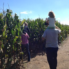 "2015-09-20-richardson-corn-maze-12_42592211244_o • <a style=""font-size:0.8em;"" href=""http://www.flickr.com/photos/109120354@N07/32346228378/"" target=""_blank"">View on Flickr</a>"