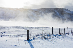 Winter Driving near Reynisfjara Beach in Iceland (Lee Rentz) Tags: atlantic atlanticocean iceland reynisfjall reynisfjallmountain reynisfjara reynisfjarabeach ringroad route1 southcoast vik adventure agrarian agricultural agriculture blacksandbeach blizzard blowing cold drifted driftingsnow driving experience farm fence fenceline fenceposts field frigid groundblizzard horizontal landscape march mountain nature road roadside route snow snowing snowy tourism travel visibility weather wind windblown windy winter wintry