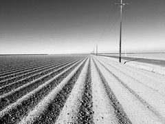 Kings County (Dan Brekke) Tags: california centralvalley sanjoaquinvalley kingscounty agriculture farms westlands westlandswaterdistrict