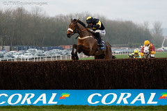 Elegant Escape-4 (JTW Equine Images) Tags: coral welsh grand national 2018 chepstow rcaecourse hunt jumps racing equine south wales monmouthshire