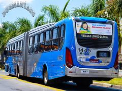 1445 VB Transportes e Turismo (busManíaCo) Tags: busmaníaco nikond3100 ônibus vb transportes e turismo