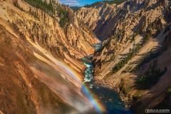 Yellowstone Grand Canyon (Giulio Giuffra) Tags: usa america grandcanyon nationalpark yellowstone