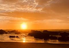 East Coast sunrise (shanahands2) Tags: australia sunrise rocks waves sea