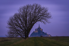 France, Normandy (Alexander JE Bradley) Tags: magical 70200mmf28 afsvrzoomnikkor70200mmf28gifed nikon70200mmf28fl d500 nikon nikkor europe france normandy lowernormandy bassenormandie manche montsaintmichel fortifications island monumenthistorique mtsaintmichel saintmichaelsmount environment architecture frenchgothic bastions buildings building religious church monastery abbey monasticfraternitiesofjerusalem residential spire citywalls fortificationtowers history landscape hinterland lookout viewpoint scenic seascape nature noperson hill grass twilight alexanderjebradley photograph photography travel tourism travelphotography wwwalexanderjebradleycom wwwaperturetourscom aperturetours normandyloirevalleyworkshop unesco worldheritage heritage montsaintmichelanditsbay