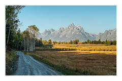 """""""Driving down a Country Road"""" (Bob C Images) Tags: yellow road mountains trees aspens cabin grandtetons jacksonhole wyoming"""