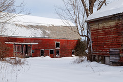 Old Barns, New Snow (fotofish64) Tags: barn redbarn oldbarn roof weathered decay ruraldecay ramshackle winter snow freshsnow red color cliftonpark capitaldistrict saratogacounty newyork outdoor pentax pentaxart rural farm agriculture kmount k70 pentaxda1855mmwrlens