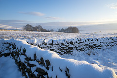 Winter morning at Back Rowarth (Keartona) Tags: snow stonewall wall countryside english england rowarth derbyshire morning february pennines farm glossop hills landscape rural sunny sunlight plainsteads monksroad