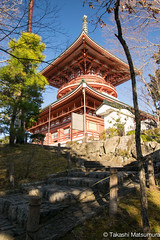 Narita-san Shinsho-ji Temple (takashi_matsumura) Tags: naritasan shinshoji temple ngc nikon d5300 成田山 新勝寺 成田市 千葉県 afp dx nikkor 1020mm f4556g vr