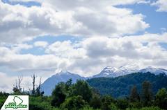_DSC6444 (Rutas Patagónicas) Tags: patagonia rutaspatagónicas ruta 231 lago yelcho región de los lagos agenciaschaefer