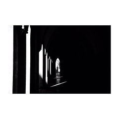 vienna (s_inagaki) Tags: monochrome walking bnw street モノクロ 白黒 bw 散歩 blackandwhite スナップ snap スローフォト slowphoto オーストリア austria vienna ウィーン
