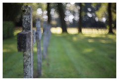 Begraafplaats Veenhuizen _ 4 (leo.roos) Tags: grave graf cross kruis veenhuizen begraafplaats kerkhof cemetery graveyard a7rii carlzeissjenabiotar5014 czj cinelens 16mm pentaflexak16 darosa leoroos