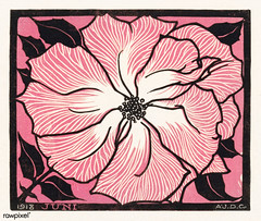 June (1918) by Julie de Graag (1877-1924). Original from the Rijks Museum. Digitally enhanced by rawpixel. (Free Public Domain Illustrations by rawpixel) Tags: antique art artwork design drawing floral flower handdrawn illustrated illustration illustrator juliedegraag june old pdrijks pink publicdomain rijksmuseum sketch vintage woodcut