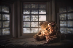Rainy Day Magic ({jessica drossin}) Tags: jessicadrossin portrait bear stuffed animal toy child girl toddler magic magical rain raindrops inside imagination cute window wwwjessicadrossincom