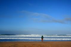 seul face à l'océan Portugal _9943 (ichauvel) Tags: homme man seul lonely regarder looking océanatlantique amadobeach plagedeamado carrapateira algarve portugal europe westerneurope voyage travel exterieur outside novembre november vagues waves cielbleu bluesky sable sand humain human jeune young surfeur