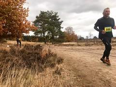 haarlerbergloop 10 km (70)