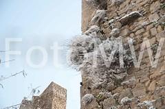 CentroPaese1781 (ercolegiardi) Tags: altreparolechiave castellism centropaese città dettagliedifici elementiarchitettonici natura neve