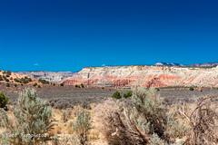 June 17, 2018-DSC_0854_J-2 (Bert_T_TX) Tags: bryce canyon grand stream water moving waterfall tree root rock red sky blue kodachrome basin utah arizona southwest yellow orange tropic ditch