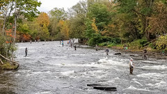 Weekend in Fishing Paradise (Yuri Dedulin) Tags: 2017 dedulinyuri fishing ny newyork pulaski river salmon salmonriver unitedstates tughill stream water fun weekend vacation chinook summer fall winter october november steelhead trout angler lake ontario cohosalmon friends fish