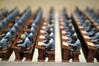 Rangs d'écoliers (Philippe_28) Tags: rouen 76 seinemaritime normandie france europe école shool écoliers