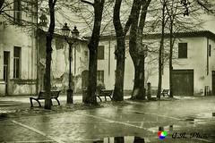 Vecchia cartolina,...scattata ieri (Gianni Armano) Tags: vecchia cartolina scatto ieri san giuliano nuovo alessandria piemonte italia foto gianni armano photo nevicata flickr