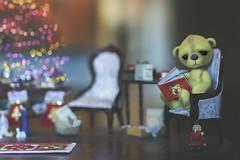 button does not like christmas (rockinmonique) Tags: 52in52 201852weekthemechallenge button christmas holidays tree book myfriendmadethisminiaturesetupformeandbuttonwhoofcoursedoesntlikeit bokeh macro miniature canon canont6s tamron tamron45mm copyright2018moniquewphotography