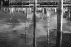 Cape May Reflections 1 (ms2thdr) Tags: 720nm beach capemay docks ir infrared marina monochrome nj newjersey ocean water