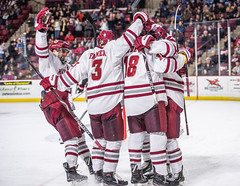 UMass Hockey vs. Northeastern 1-63 (dailycollegian) Tags: umass hockey ice college sports mullins center minutemen northeastern win east gaudet chaffee chau carolineoconnor