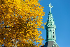 Yellow Leaves outside of St. Dominic's Church in the West End (Corey Templeton) Tags: city danforthstreet foliage maine newengland portland portlandmaine tree westend unitedstates us