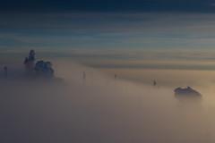 Fog and Stones (Bayerwaldteam) Tags: fog nebel dreisesselberg winter