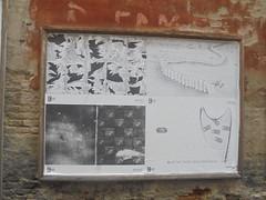 892 (en-ri) Tags: cheap festival bianco nero girio bologna wall muro graffiti writing manifesto poster