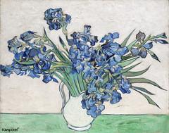 Irises (1890) by Vincent Van Gogh. Original from the MET Museum. Digitally enhanced by rawpixel.